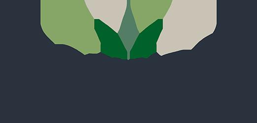 Edgewood Narangba